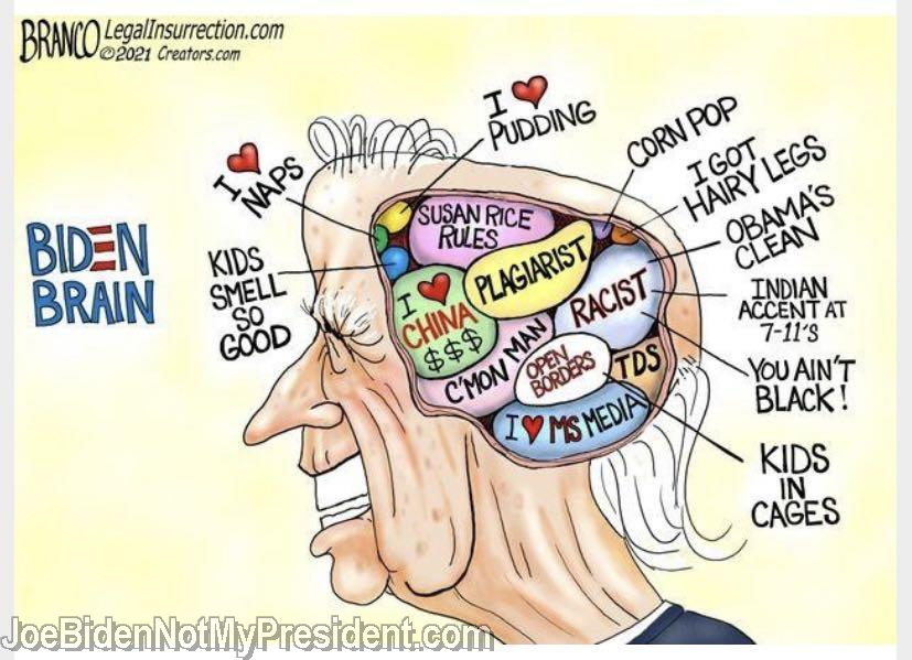 The Biden Brain