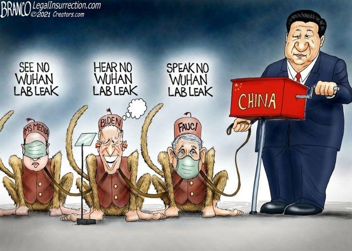 China's Monkey Business